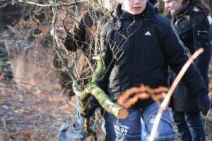 Baumfaellaktion Klimaschutz